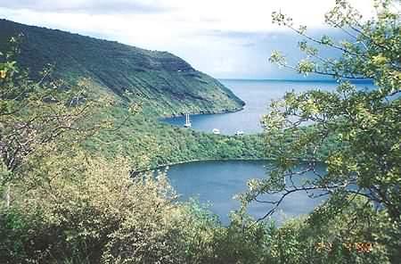 Oeil, îles Galapagos Tag1